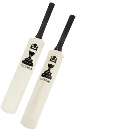 Ashes Urn Mini Autograph Bat