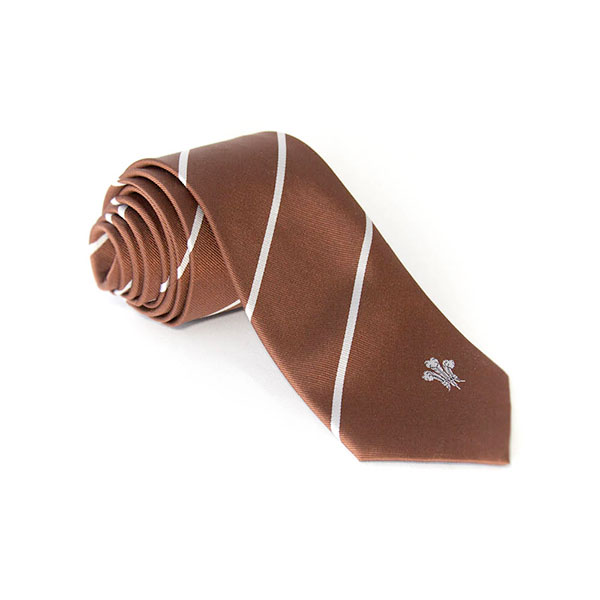 Surrey CCC Supporters Brown Tie
